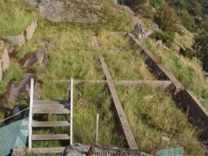 Brakke. Bildedato: 9. september 2000